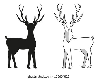 vector deer with beautiful horns
