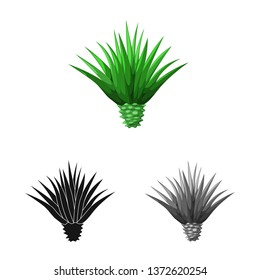 Vector design of agave and plant  sign. Set of agave and cactus vector icon for stock.