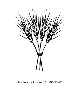 Vector design of barley and sheaf icon. Graphic of barley and malt vector icon for stock.