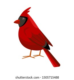 Vector design of cardinal and red sign. Web element of cardinal and bird stock symbol for web.