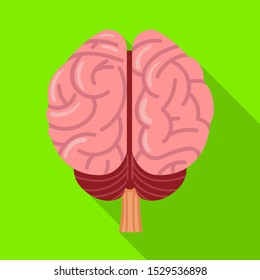 Vector design of cerebrum and hemisphere sign. Web element of cerebrum and gyri stock vector illustration.