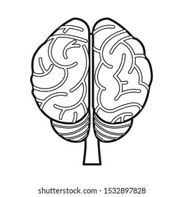 Vector design of cerebrum and hemisphere symbol. Web element of cerebrum and gyri vector icon for stock.