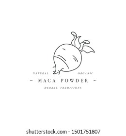 Vector design element and icon in linear style - maca powder - healthy eco food. Organic ingredient. Detox supplements. Logo sign