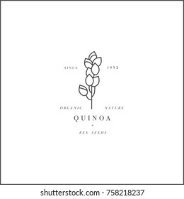 Vector design element and icon in linear style - quinoa - healthy eco food. Organic ingredient. Logo sign