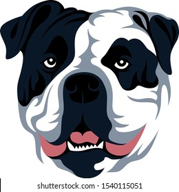 Vector Design of English Bulldog Head