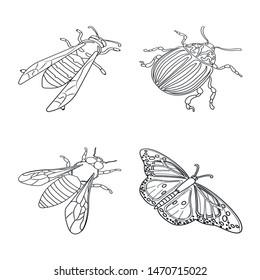 Vector design of fauna and entomology logo. Collection of fauna and animal stock vector illustration.