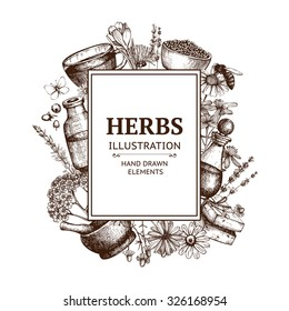 Vector design with hand drawn herbs and cosmetics illustration isolated on white. Organic plants sketch background. Natural cosmetics ingredients. Vintage template