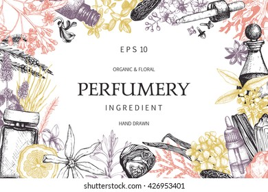 Vector design with hand drawn perfumery and cosmetics ingredients. Decorative background with vintage aromatic plants for perfumery