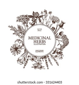 Vector design with hand sketched  herbs. Vintage frame  with medicinal herbs sketch.  Vector template isolated on white