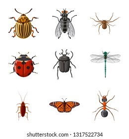 Vector design of insect and fly icon. Collection of insect and element vector icon for stock.