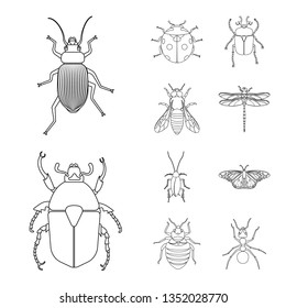 Vector design of insect and fly logo. Set of insect and element stock vector illustration.