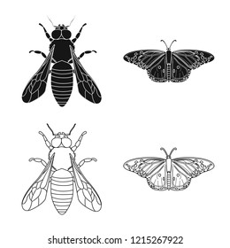 Vector design of insect and fly sign. Set of insect and element stock vector illustration.