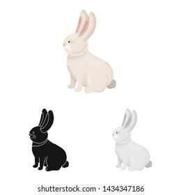 Vector design of rabbit and pet icon. Set of rabbit and bunny vector icon for stock.
