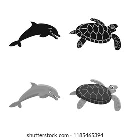 Vector design of sea and animal icon. Collection of sea and marine stock vector illustration.