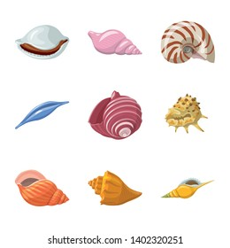 Vector design of seashell and mollusk symbol. Set of seashell and seafood  vector icon for stock.