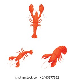 Vector design of shrimp and crab logo. Collection of shrimp and sea vector icon for stock.