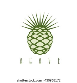 vector design template of the agave plant