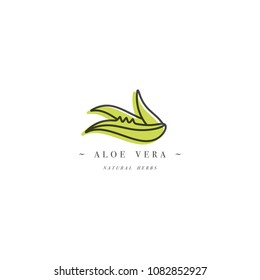 Vector design template logo and emblem healthy herb- aloe vera. Logo in trendy linear style isolated on white background