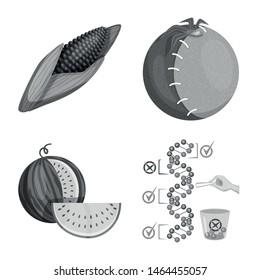 Vector design of transgenic and organic icon. Set of transgenic and synthetic stock vector illustration.