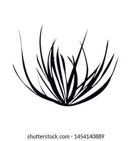 Vector design of tumbleweed and dry sign. Set of tumbleweed and botanical vector icon for stock.