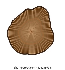 Vector design wooden cut isolated on white background. Age rings. Digital style clip art.