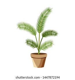 Vector detailed house plant for interior design and decoration.Tropical plant for interior decor of home or office.
