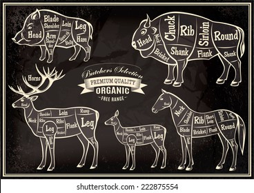 vector diagram cut carcasses of boar, bison, deer, horse
