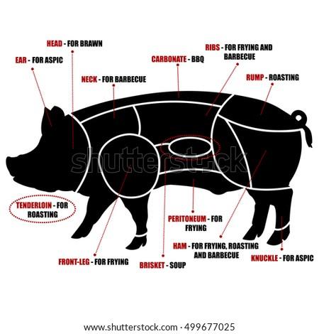 vector diagram cutting pork 450w 499677025 vector diagram cutting pork stock vector (royalty free) 499677025