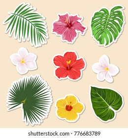 Vector different tropical plants - flowers and leaves - paper sticker and icon set. Closeup isolated design elemnts, exotic and travel collection