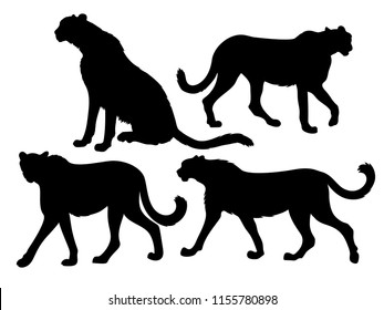 Vector diffirent silhouettes of a cheetah poses set
