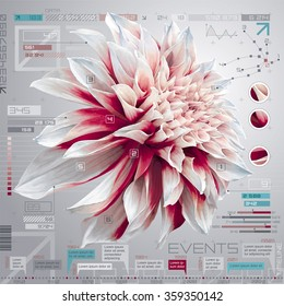 Vector digital computer screen with dahlia flower, infographic set and timeline report template