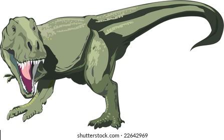 Vector Dinosaur T rex on the white background