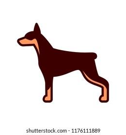 Vector Doberman Dog Icon Isolated On White Background