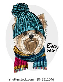 Vector dog with blue knitted hat and scarf. Hand drawn illustration of dressed dog.