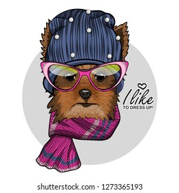 Vector dog with blue knitted hat, pink glasses and knitted scarf. Hand drawn illustration of dressed dog.