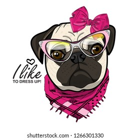 Vector dog with bow, glasses and scarf. Hand drawn illustration of dressed pug.