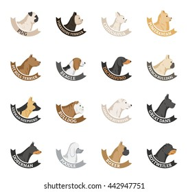 Vector dog breeds icons collection isolated on white