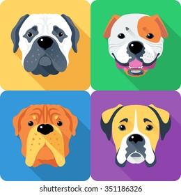 Vector dog Bullmastiff, French Mastiff, Boxer and American Bulldog breed face icon flat design