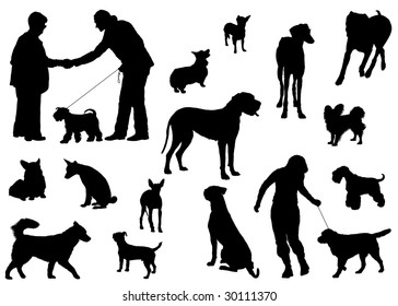 Vector dog collection on a white background