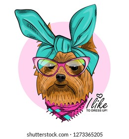 Vector dog with green headscarf, glasses and scarf. Hand drawn illustration of dressed dog.