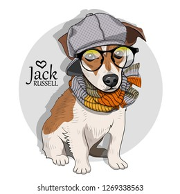 Vector dog with grey hat, glasses and knitted scarf. Hand drawn illustration of dressed Jack Russell terrier.