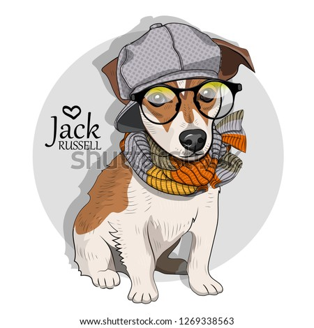Vector dog with grey