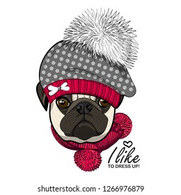 Vector dog with hat and red knitted scarf. Hand drawn illustration of dressed pug.