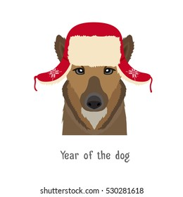 Vector dog head in winter new year, christmas ear-flapped hat. Animal of Chinese zodiac,horoscope  symbol.  flat cartoon illustration isolated. Poster, banner, print advertisement, web design element