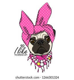 Vector dog with headscarf, necklace and scarf. Hand drawn illustration of dressed pug.