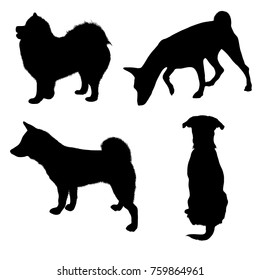 Vector dog illustrations. Set of black silhouettes. Different breeds of dogs.