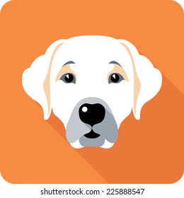 Vector dog Labrador Retriever icon flat design