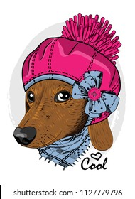 Vector dog with pink hat, ble bow and blue scarf. Hand drawn illustration of dressed dog.
