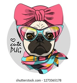 Vector dog with pink headscarf and glasses. Hand drawn illustration of dressed pug.