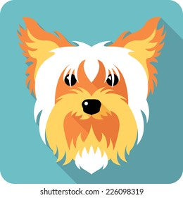 Vector dog Yorkshire terrier icon flat design